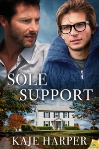 SoleSupport72lg