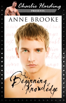 The Beginning of Knowledge - Anne Brooke